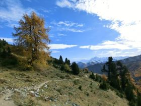 Höhenweg nach Schlinig