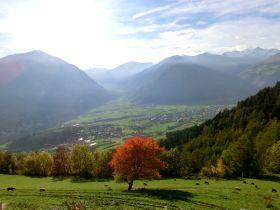 Blick vom Lechtlhof aus ins Münstertal